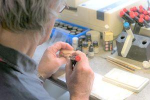 Unser Zahntechniker passt ein Gebiss mit einer Gerätschaft an.